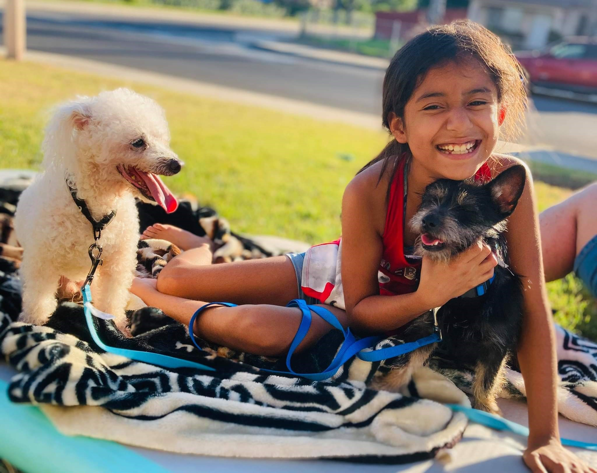 Girl with 2 small dogs
